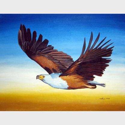 L'aigle pêcheur africain