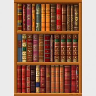 Une bibliothèque de trois étagères enplie de livres de la littérature classique