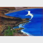 Une sterne vole au dessus de la côte