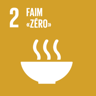 F SDG20goals icons individual rgb 021
