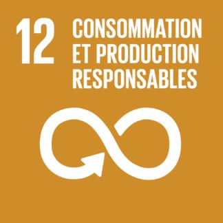 12 – Consommation et production responsables