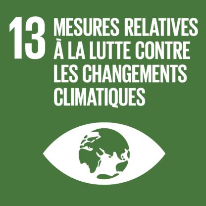 F SDG20goals icons individual rgb 131