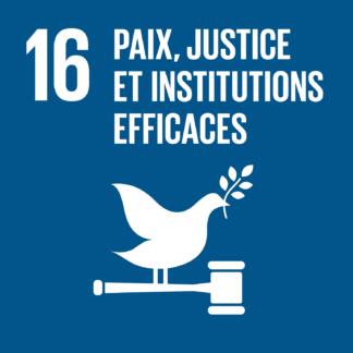 16 – Paix, justice et institutions efficaces