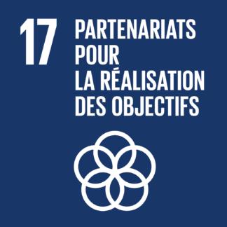 17 – Partenariats pour la réalisation des objectifs